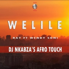 Ray - Welile ft. Wendy Soni (Dj Nkabza Afro Touch)